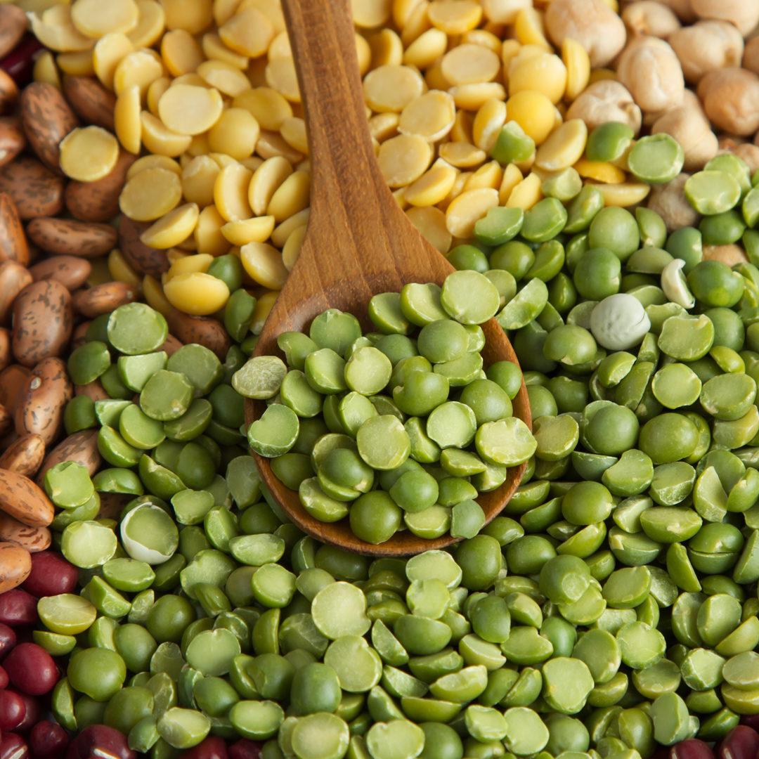 Fabricant / Façonnier Protéines Végétales